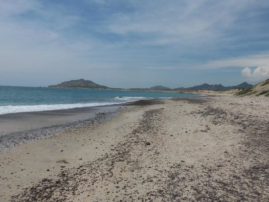 Cabo Pulmo Marine Preserve: The pebble strewn beach