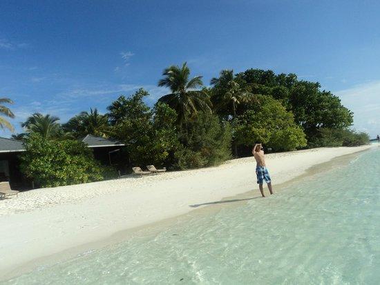 Royal Island Resort & Spa: Can you see me?
