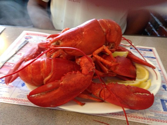 Rockland Cafe & Bakery: 3 lobsters for $22.99 we ordered 6