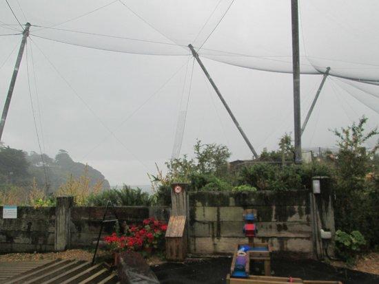 Living Coasts: Grey day, grey atmosphere