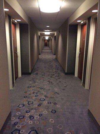 Courtyard Hanover Lebanon: Nice carpet in hallway
