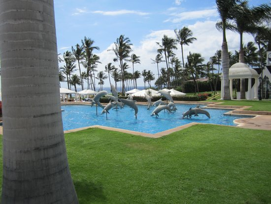 Grand Wailea - A Waldorf Astoria Resort: The dolphin pool