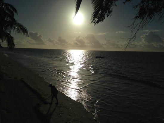 Neptune Palm Beach Boutique Resort & Spa : Beach front