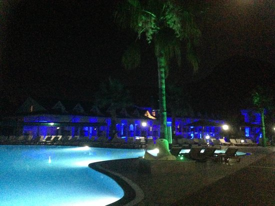 Green Forest Hotel : The Poolside after dark