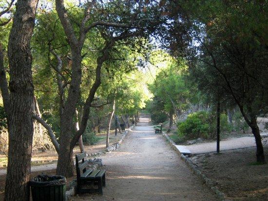 Areopagus: A path to Philopappou