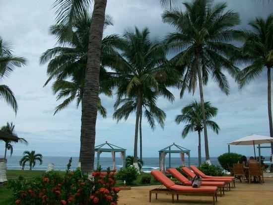Hotel Iguanazul: vista de reposeras y camastros