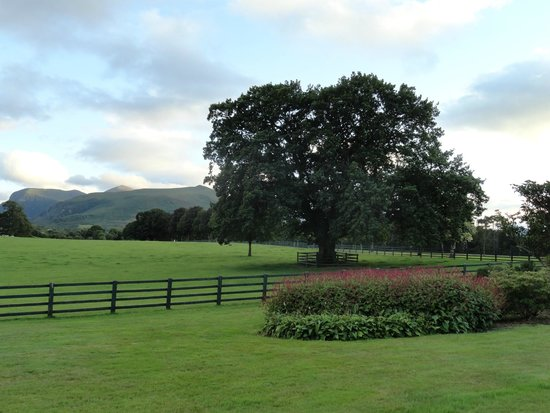 The Dunloe: hotel grounds