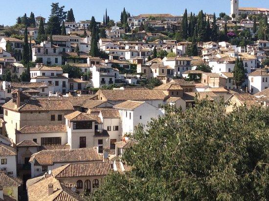 Tour Guru Granada: View of the Albaicin from the Realejo district