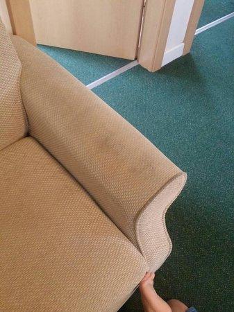 Ilfracombe Holiday Park: 'gold' apartment foul smelling sofa.