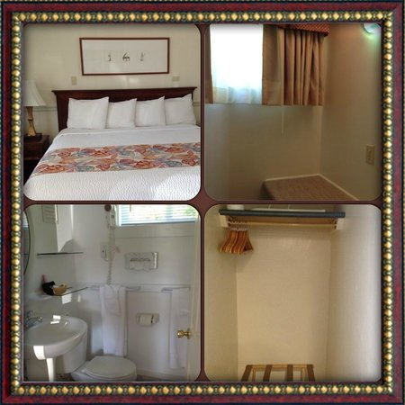 Eagle Wing Inn : Room