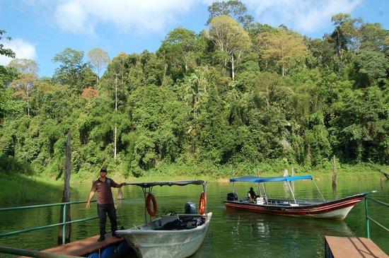 Belum Rainforest Resort : Excursión por el lago Temenggor y la selva