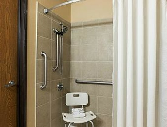 Super 8 Taylor/Detroit Area: Handicap Shower