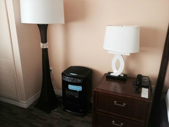 Hilton Orlando Bonnet Creek : Air Purifier