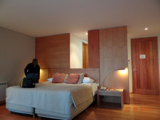 Design Suites Bariloche: Room 4004