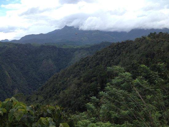 Aranyakam: Loved the view