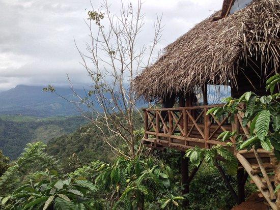 Aranyakam: One of the tree huts