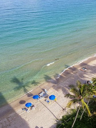 Pelican Grand Beach Resort, A Noble House Resort : View from above