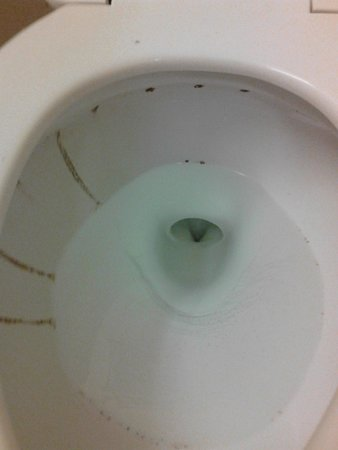 Extended Stay America - Wilmington - New Centre Drive: They will not clean or even leave things for you to clean the toilets. Its gross!