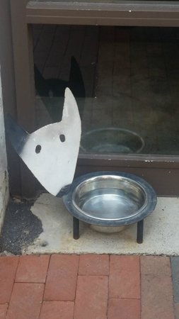 Baked and Wired: Awesome Pet Bowl at the front of the store!