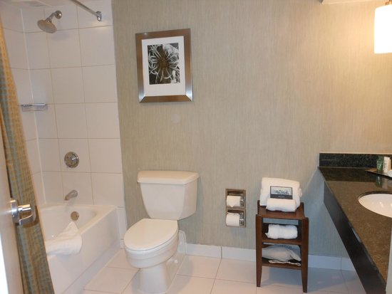 Hilton Boston / Woburn: Standard Bathroom