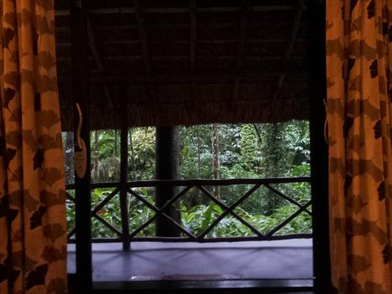 Shalimar Spice Garden - An Amritara Private Hideaway : VIW FROM ROOM