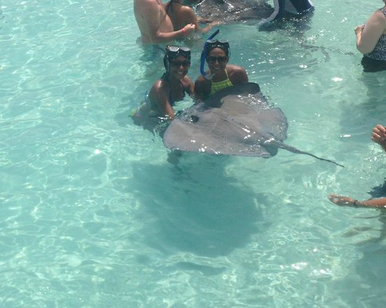 MarineLand Tours : my sister and i with the sting ray