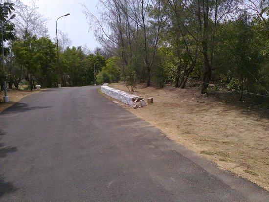 TTDC Hotel Mamallapuram : driveway