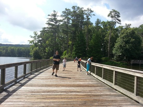 Bridge going to the birds of prey show picture of callaway gardens pine mountain tripadvisor for Places to stay near callaway gardens