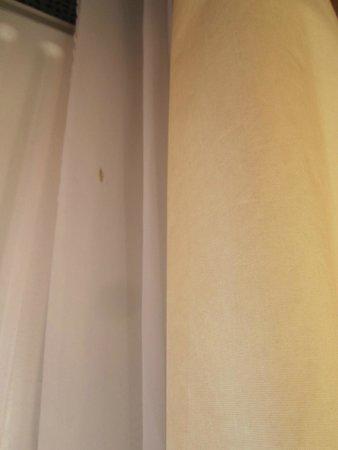 SORAT Hotel Ambassador Berlin: Vorhang
