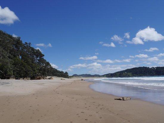 The quiet stretch of Hot Water Beach/Surf Beach