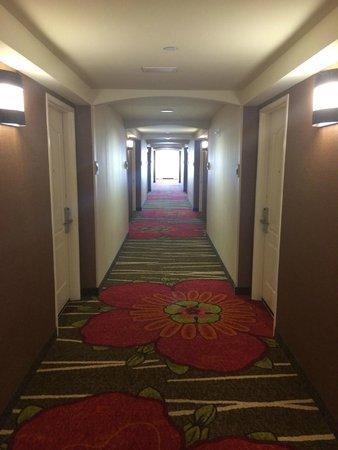 Hilton Garden Inn Dallas Lewisville: Hallway