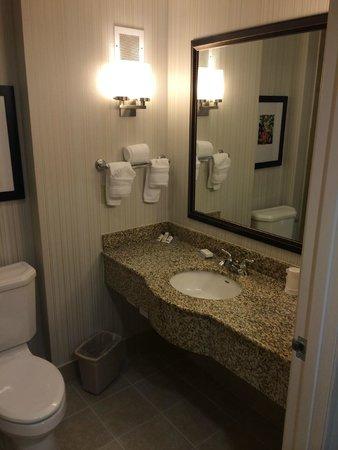 Hilton Garden Inn Dallas Lewisville : Bathroom