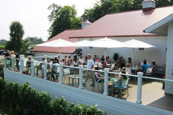 Brys Estate Vineyard & Winery: Patio