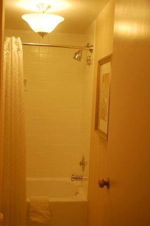 Renaissance Cleveland Hotel: Rain shower head