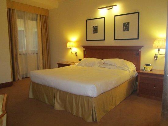 Starhotels Metropole: Quarto - Room