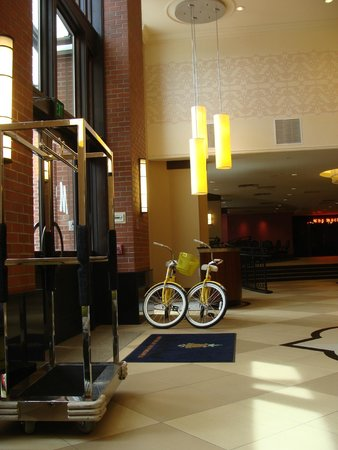 The Maxwell Hotel - A Staypineapple Hotel: Want to get out on a yellow bike? No problem.