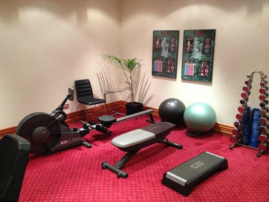 Hotel Riu Plaza The Gresham Dublin: Gym