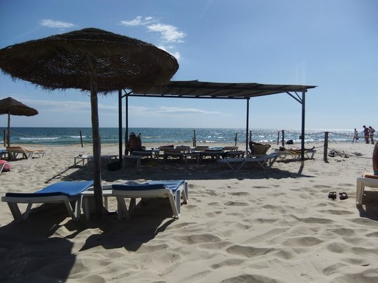 Hotel Marhaba Beach: view from our sunbed