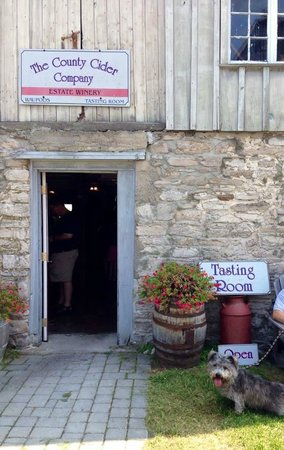The County Cider Company : Seamus guarding the door