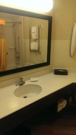 La Quinta Inn & Suites New Orleans Downtown : Regular bathroom