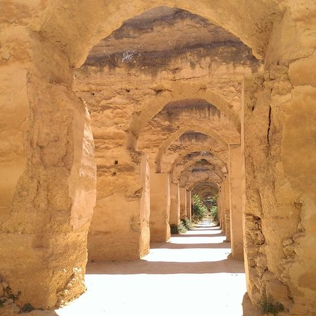 Dunes Line Day Tours : Fes
