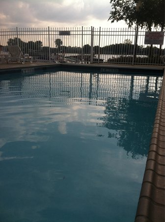The Blue Heron Inn: Pool area