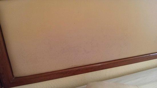Hotel Los Cactus: mold on headboard
