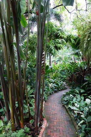 Jim Thompson House: Jardin
