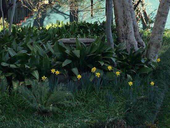 De Hoek Country Hotel: The gardens