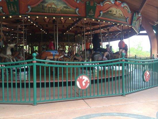 Nashville Zoo: Kids enjoying the carousel!!
