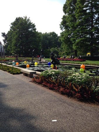 Missouri Botanical Garden: Reflecting pool