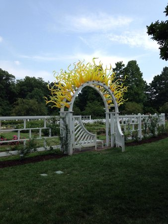 Missouri Botanical Garden: Rose garden
