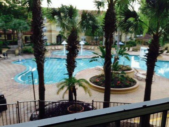 Blue Tree Resort at Lake Buena Vista : Pool view from room