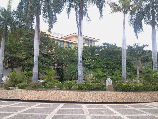 Estelar Santamar Hotel & Convention Center: Jardin